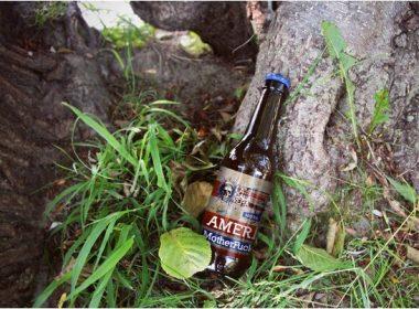 Pack 2 Beer Forest Mockups