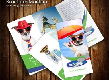 Tri Fold Brochure Mockup PSD Template