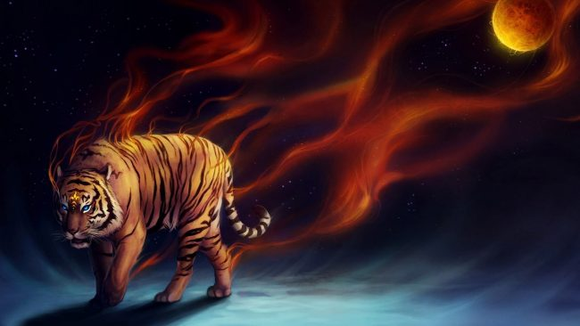 1920 × 1080 Tiger HD Abstract Wallpapers