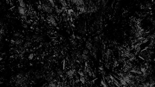 1920 × 1080 Black and white Texture Abstract wallpaper