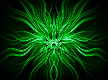 Green Abstract Flower Design Wallpaper-3840 × 2160