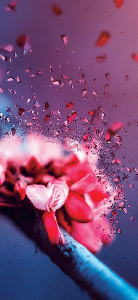 Creative Flower Wallpaper [1080×2340]