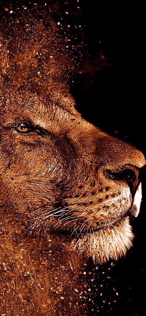 creative-lion-HD-wallpaper-1080x2340