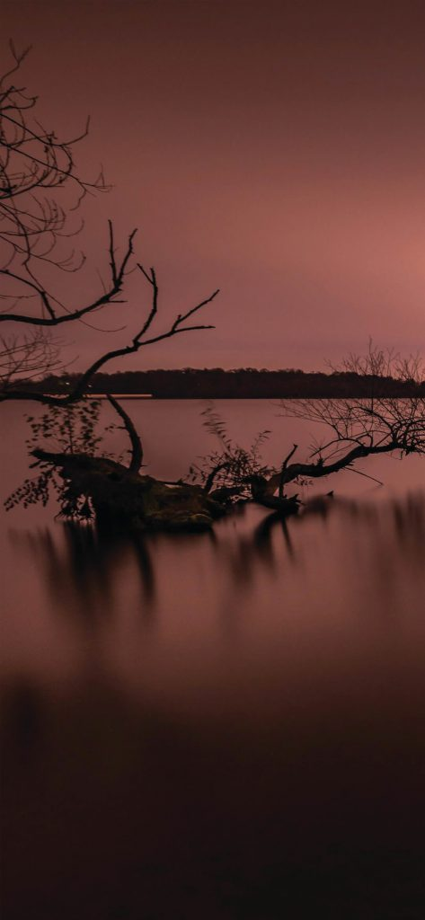 Evening Silent Lake HD Wallpaper [1080×2340]