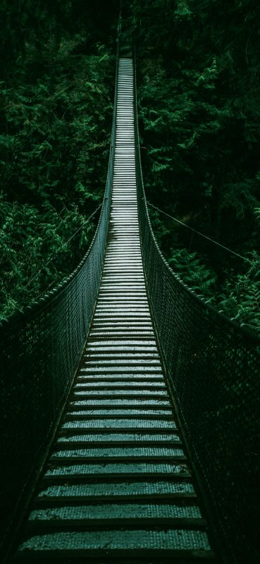 Amazing-Forest-Bridge-1080×2340