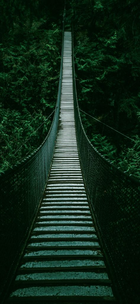 Amazing-Forest-Bridge-1080×2340