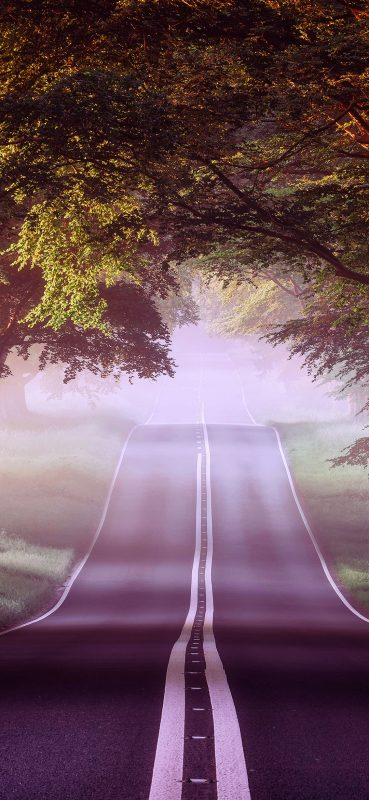 1080×2340-Forest-Road-HQ-Wallpaper-Misty