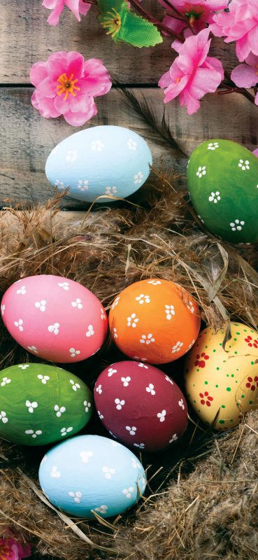 1080x2340-holiday-easter-colorful-eggs