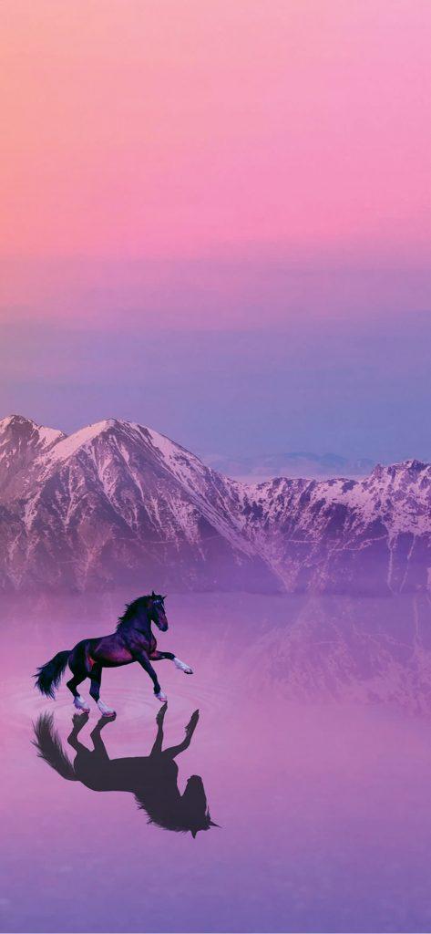 Horse Mirror Photography [1080×2340]