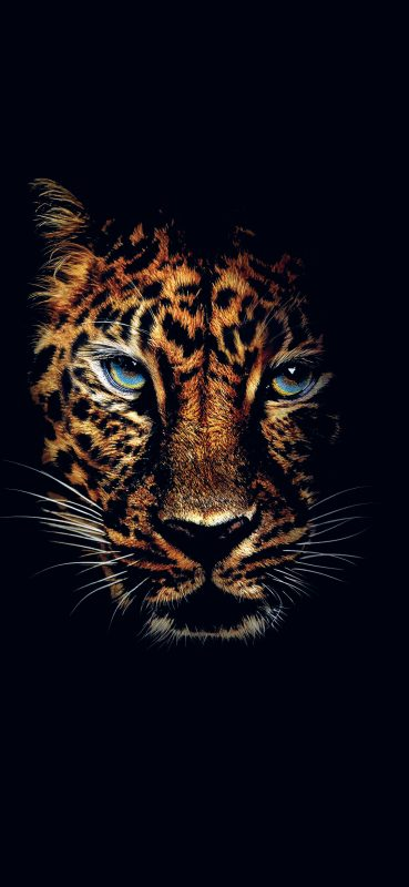 Jaguar-HD-Photography-1080×2340