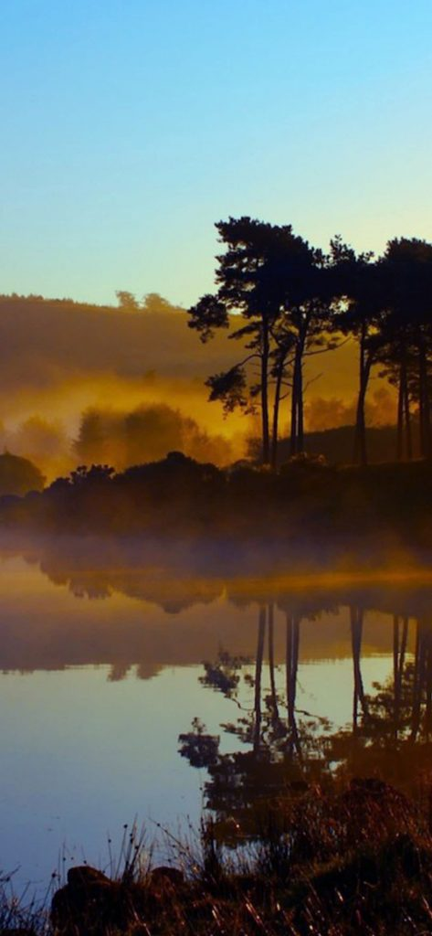 1080×2340-Nature-High-Definition-Photography-Wallpaper