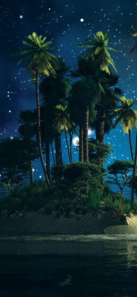 Palm Tree on Island [1080×2340]