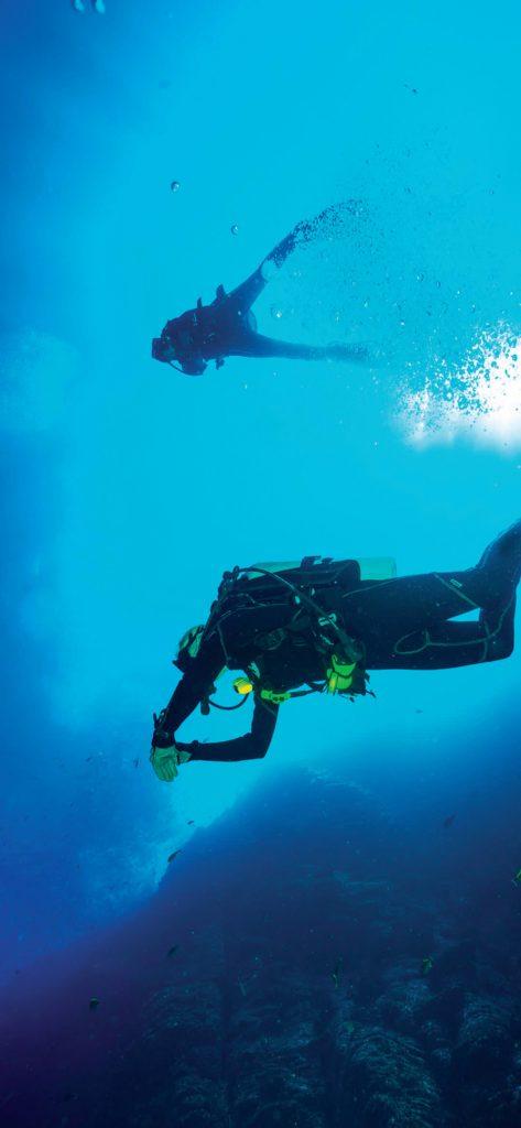 Stunning-Sea-Scuba-Diving-1080×2340