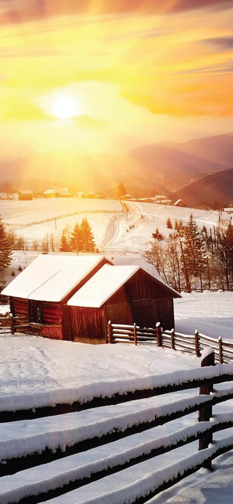 sunset-on-winter-time-wallpaper-1080x2340