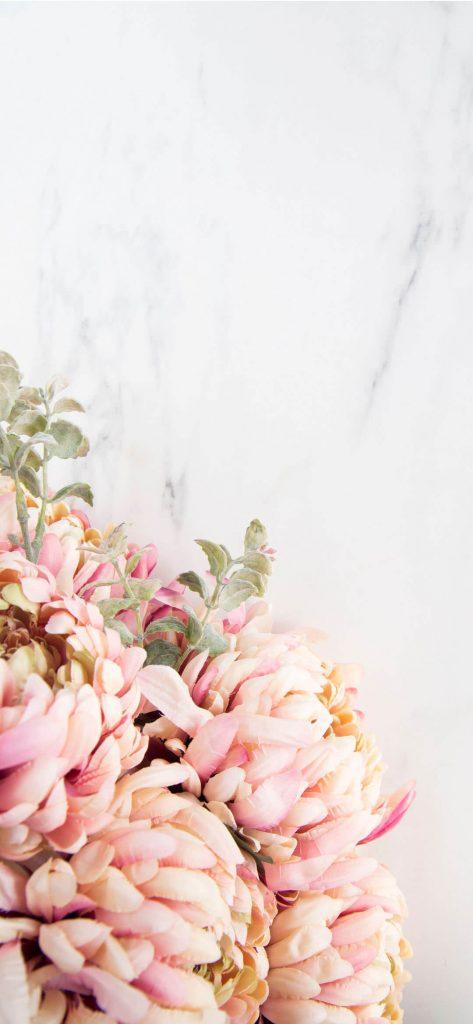 unique-flower-photography-1080x2340