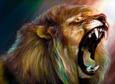 Roaring Lion wallpapers 001 1920x1200 380x280