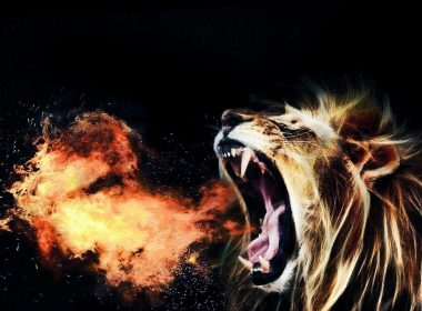 Roaring Lion wallpapers 002 1844x986 380x280