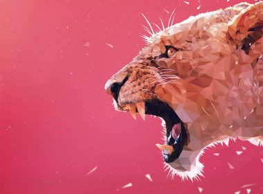 Pink Background Roaring Lion 008 3840x2160 380x280