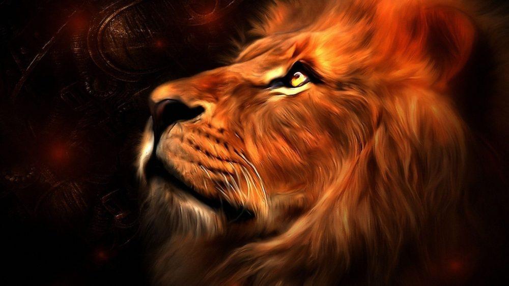 Deep Roaring Lion wallpapers-053 1920x1080