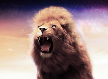 HD Roaring Lion wallpapers 054 3200x2000 380x280