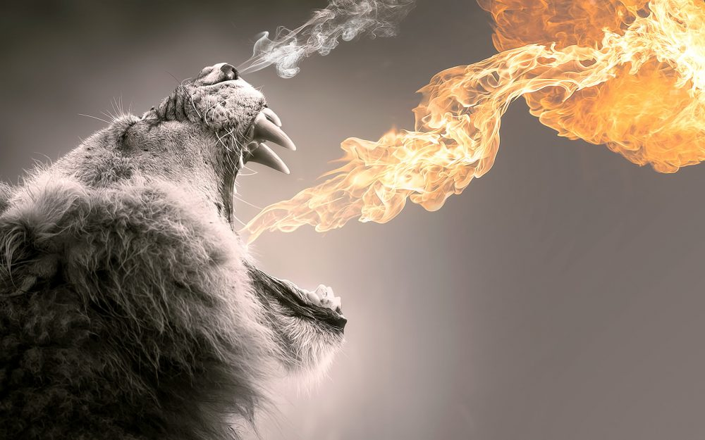 Roaring Flame Lion wallpapers-055 1920x1200 380x280