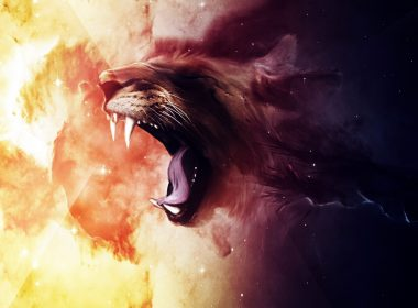 Roaring Lion wallpapers 056 2560x1600 380x280