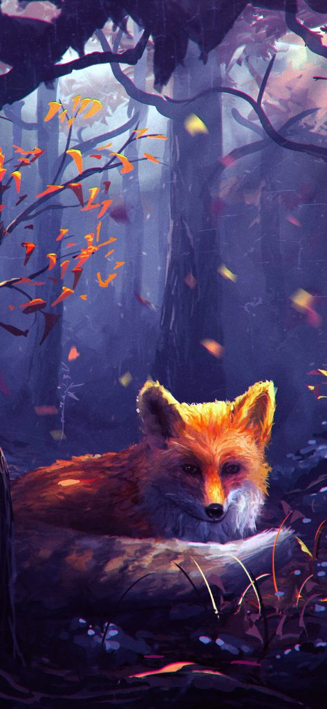 stunning-fox-hd-wallpaper-1080x2340