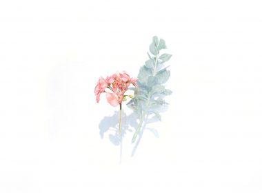 Faded Wallpaper-024-1350x900