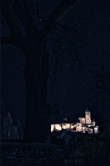castle-lighting-in-dark-night-wallpaper-320x480